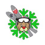 odznaka SITN PZN zielona